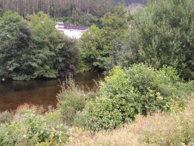 Valdés y Confederación Hidrográfica coordinarán trabajos de mantenimiento y conservación de cauces