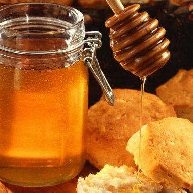 """Mercedes Cruzado: COAG """"defiende a los apicultores frente a los envasadores de miel"""""""