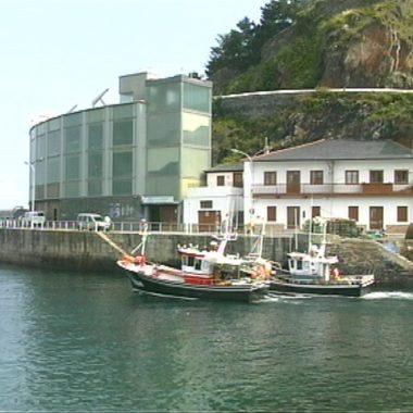 Comienza la costera de la caballa con una cuota de 1.750.000 kilos