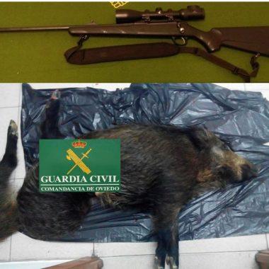 Investigados por la Guardia Civil los supuestos autores de un delito contra la flora y la fauna