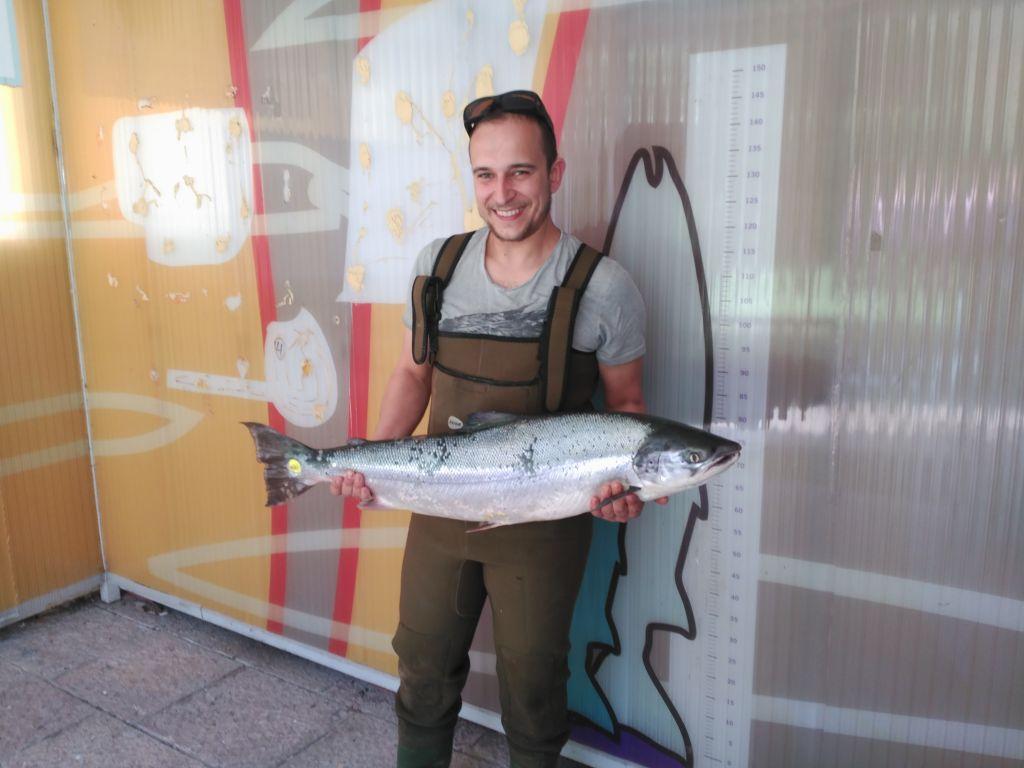 El moscón Juan Carlos Rodríguez, pescó esta tarde el Campanu del Narcea que pesó mas de nueve kilos