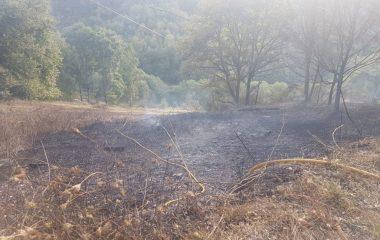 Un incendio quema media hectárea de terreno en Santa Eulalia de Oscos