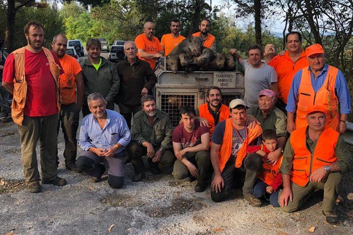 Cierre de Temporada en el Coto de Valdés con 446 Jabalíes Cobrados