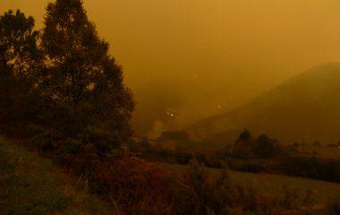 """Coordinadora Ecologista: """"la Comisión Europea nos confirma que va investigar por qué reciben ayudas de las PAC las superficies quemadas"""""""