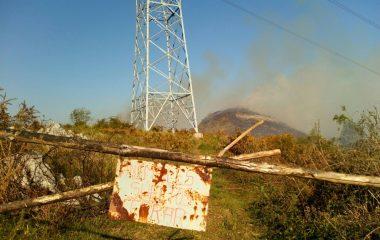 """La Coordinadora Ecologista pide la """"dimisión fulminante"""" del secretario general de UCA, tras ser condenado """"por incendiar un monte"""""""