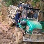 Un Trabajador ha resultado Herido tras ser Golpeado por un Árbol en Pravia