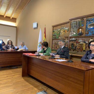 Pleno de Organización en Navia, el lunes, 1 de julio