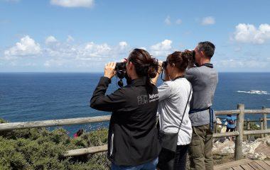 Los alojamientos asturianos reciben a 317.767 turistas en el primer semestre (un 18% más que en el mismo período de 2020)