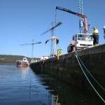 Recuperada en el puerto de Navia, la aleta caudal de la ballena izada a tierra en agosto