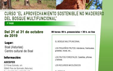 Curso Gratuito en Boal sobre Aprovechamiento Sostenible no Madedero del Bosque Multifuncional