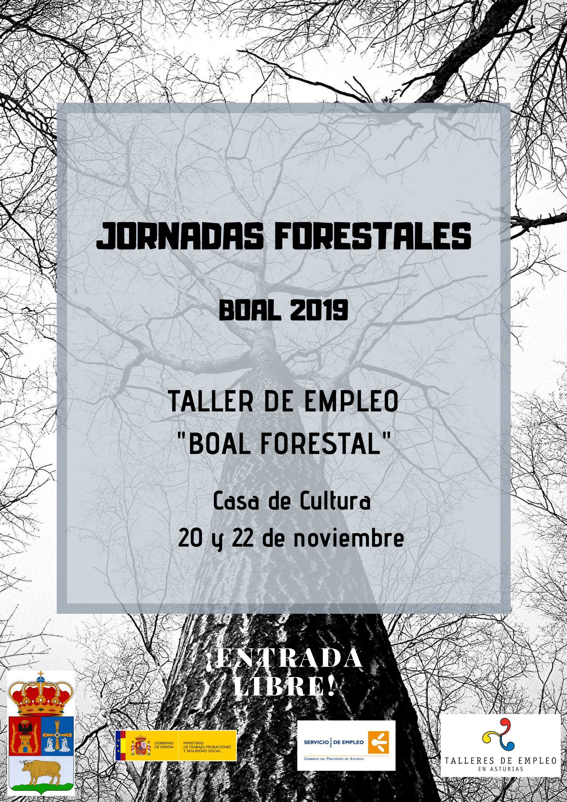Jornadas Forestales Boal 2019