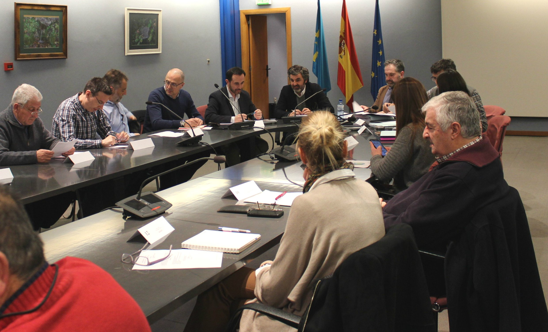 Actualización del Plan Forestal y modificar la Ley de Montes, objetivos del Consejo Forestal de Asturias
