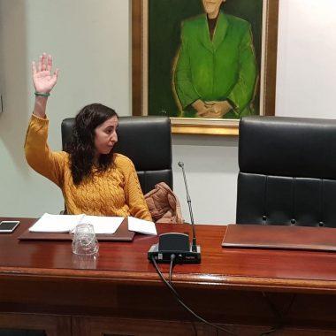 Andrea Nogueira pasa al grupo de concejales no adscritos en Valdés