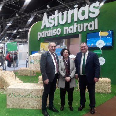 """Taramundi recibe el galardón """"Pueblos Mágicos 2020"""" al desarrollo turístico rural"""