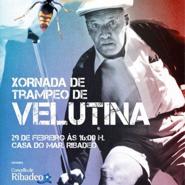 Jornada sobre trampeo de velutinas en Ribadeo