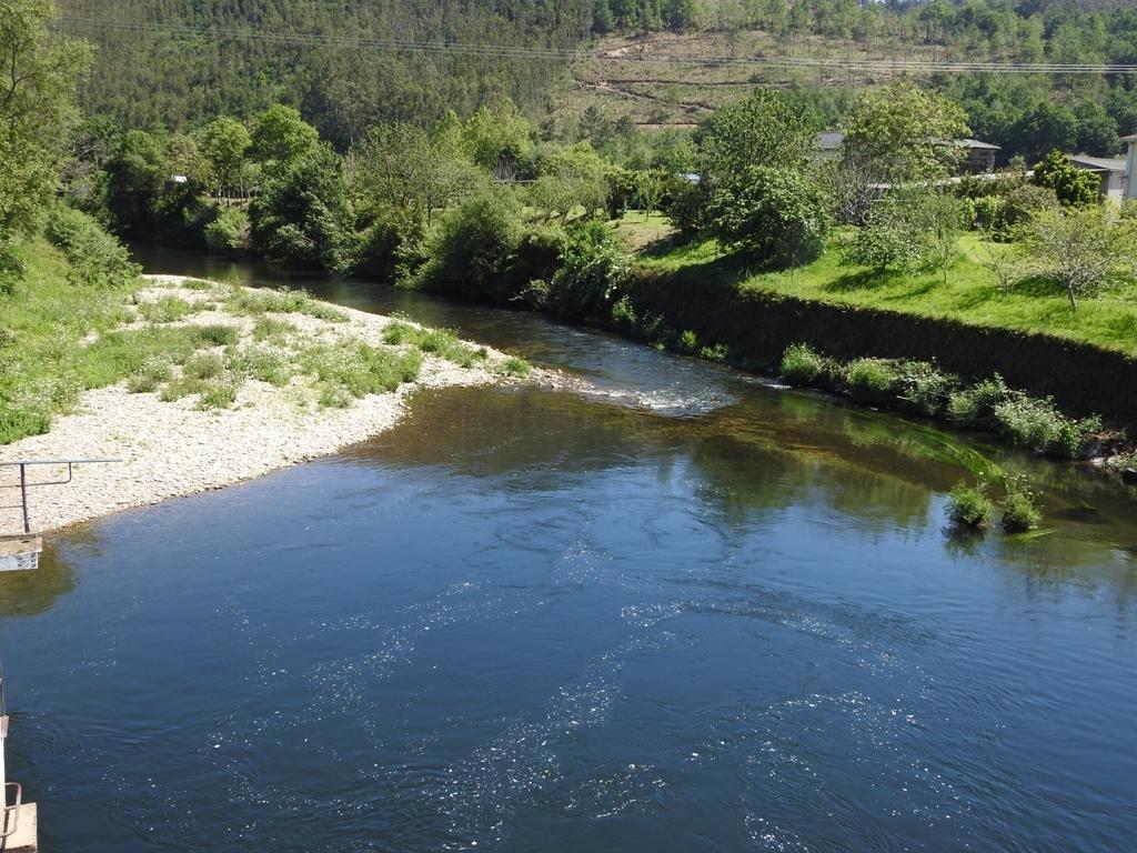 """Coordinadora Ecoloxista d'Asturies: """"El Gobierno cede ante los pescadores, vuelve amenazar el futuro de los ríos y sus pocos peces"""""""