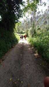 El Grupo de Montaña la Chiruca está desarrollando un Proyecto de Rutas de Senderismo en el Concejo de Cudillero