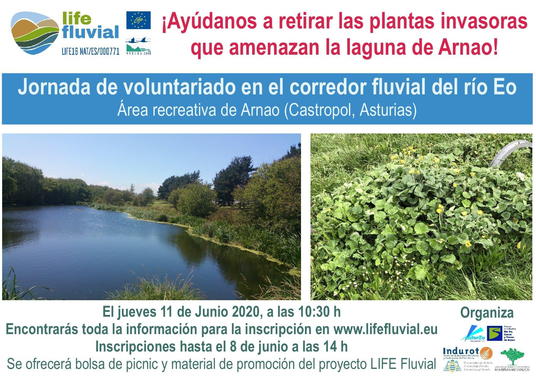 Jornada de Voluntariado Life Fluvial ¡Ayúdanos a Retirar las Plantas Invasoras que Amenazan La Laguna de Arnao!