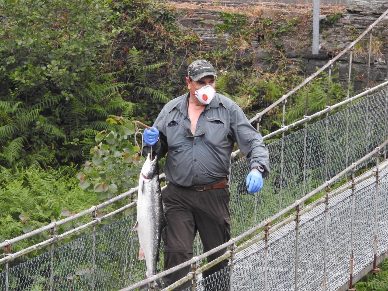 El Principado mantendrá en 2021 los cupos de captura de la pesca fluvial y el calendario de la temporada actual