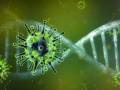 Salud confirma 66 nuevos positivos por coronavirus en Asturias