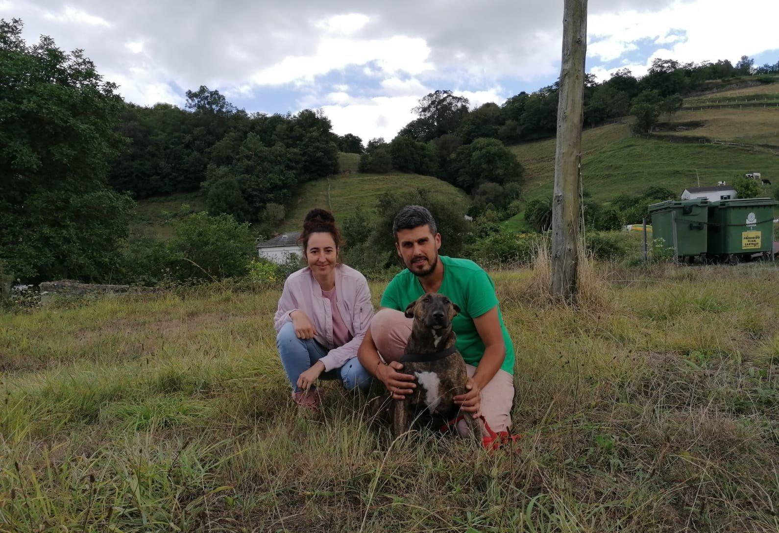 """Andrea Nogueira (Protectora Animales Valdés): """"ahora mismo tenemos muchos perros que necesitan un hogar"""""""