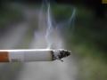 La Xunta de Galicia prohíbe fumar en la vía pública y espacios públicos (incluídas terrazas) siempre que no se pueda garantizar una distancia de dos metros entre una persona y otra
