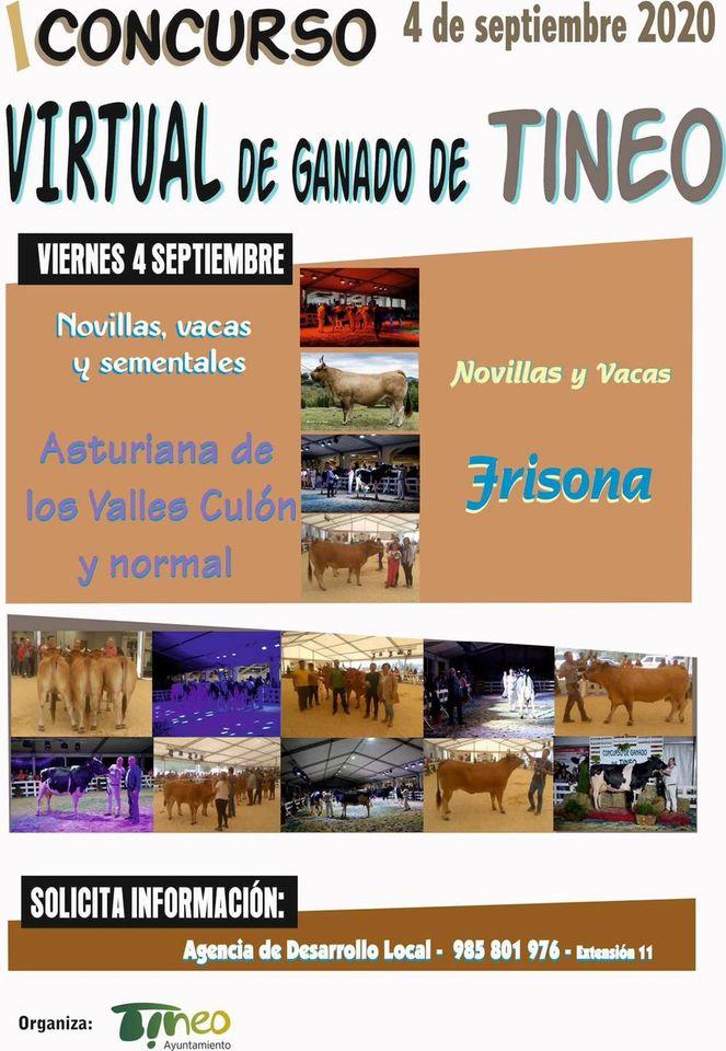 87 Videos presentados al I Concurso Virtual de las Razas Frisona y Asturiana de Los Valles de Tineo