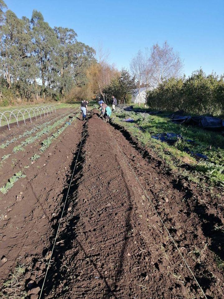 Finaliza el Curso sobre Producción Agroecológica en Finca el Cabillón de la Fundación Edes