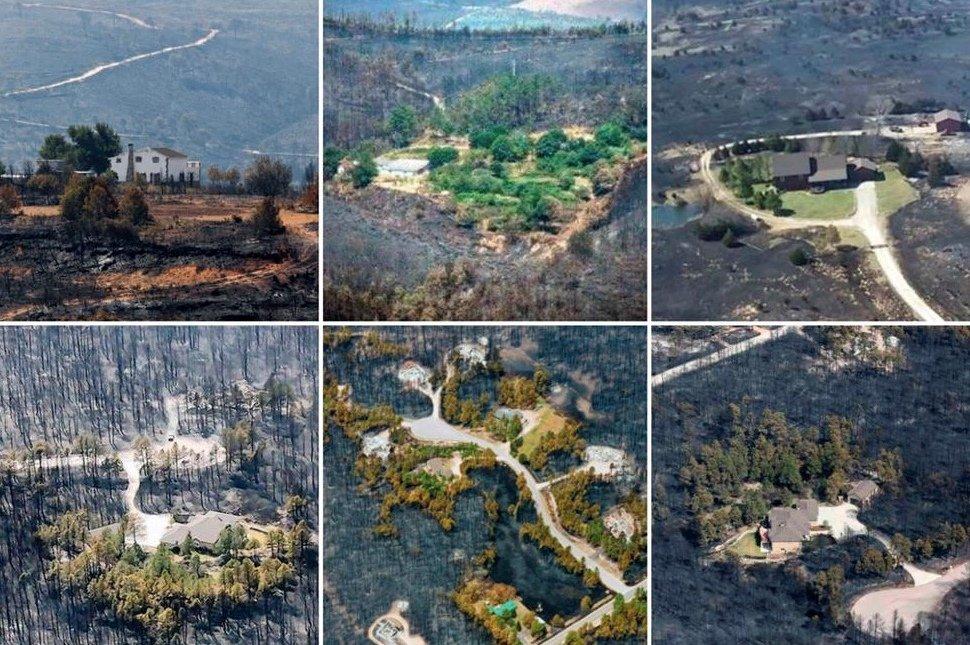 Ribadeo repartirá especies frondosas para combatir eventuales incendios forestales