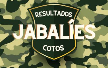 16 Jabalíes cobrados en el Coto de Valdés en las últimas Batidas