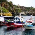 Reunión sobre las obras para reordenar amarres en el puerto de Tapia de Casariego