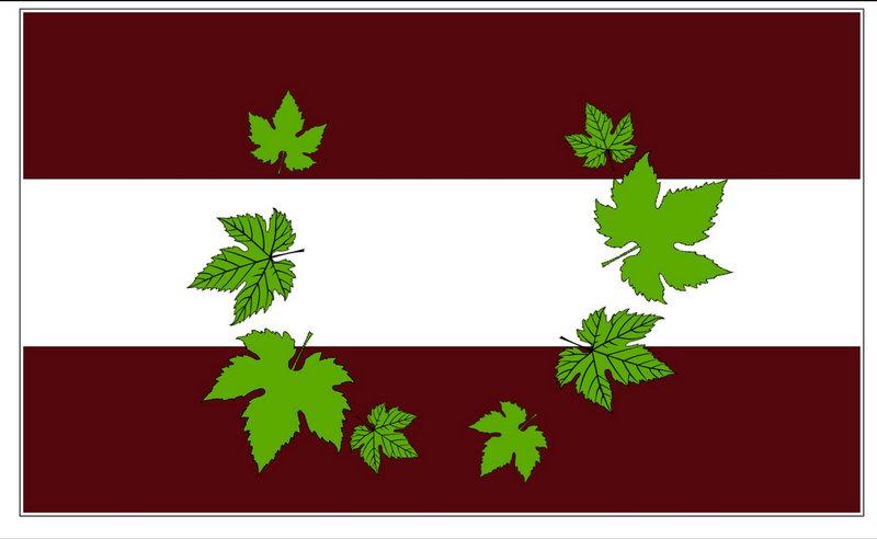 Pesoz/Pezós xa ten Bandera Oficial