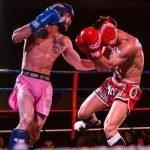 Comienza el Nacional de Kickboxing en Guadalajara
