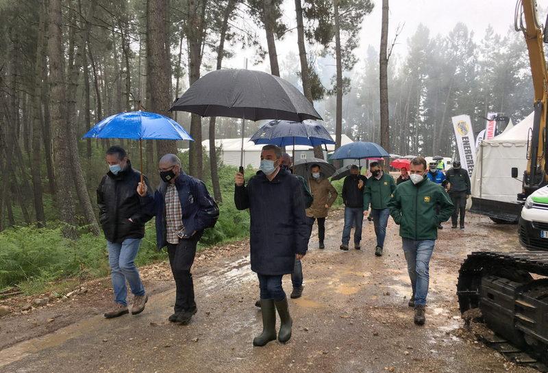 Medio Rural presentará a finales de mes el borrador del Plan Forestal