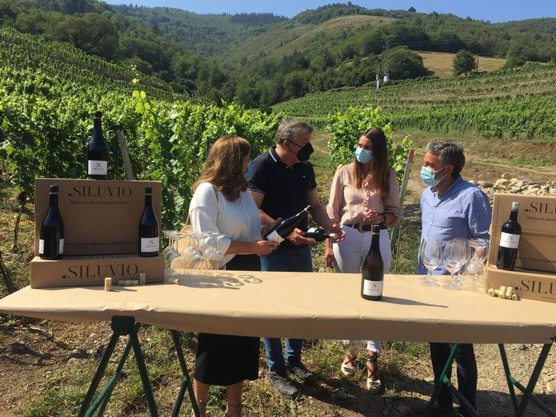 410.385 euros para poner en marcha una nueva explotación vinícola en Llagüeiro (Ibias) adscrita a la denominación de origen protegida (DOP) Vino de Cangas
