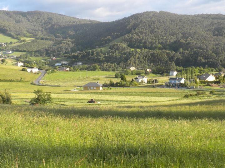El Principado saca a licitación las obras de la red de caminos de la concentración parcelaria de los montes de Anleo, en Navia