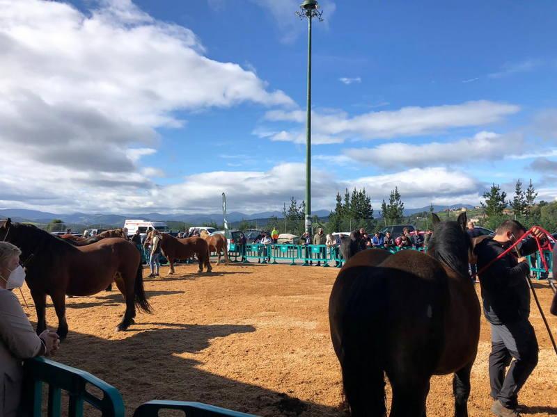 El pasado lunes se celebró la Feria de San Francisco en Tineo